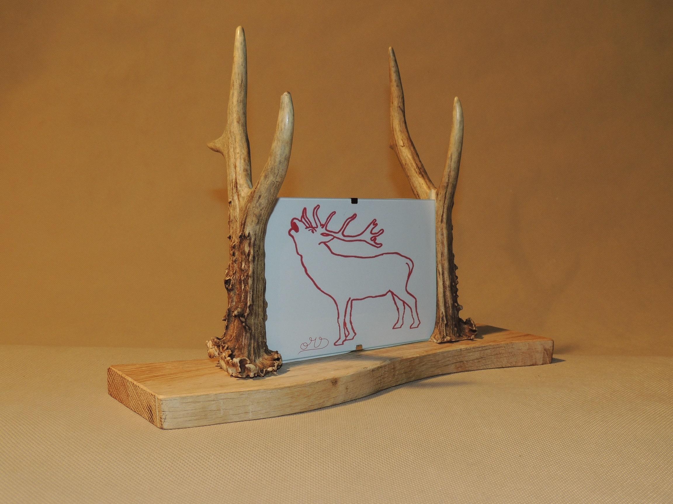 rehgeweih bilderrahmen oh my deer hirschgeweih deko geweihlampen geweihm bel uvm. Black Bedroom Furniture Sets. Home Design Ideas