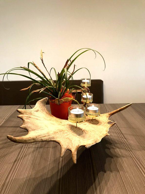 Geweih Deko Teelichthalter aus Damwild