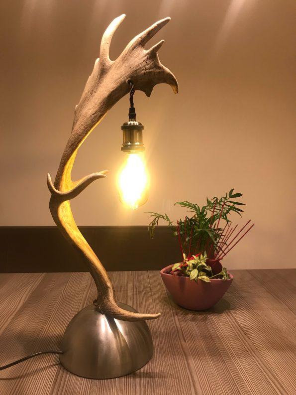 Geweih Stehlampe Damhirsch